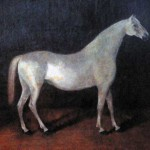 Арабский жеребец, Сметанка